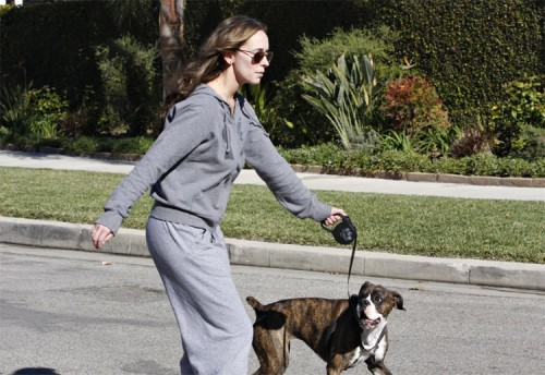 Jennifer Love Hewitt walks her dog