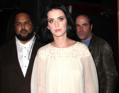 Katy Perry wears a dress