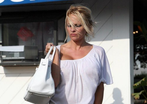 Pamela Anderson is probably lost