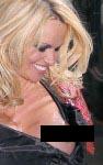 pamela anderson nipple 07