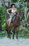 amy winehouse horse 02