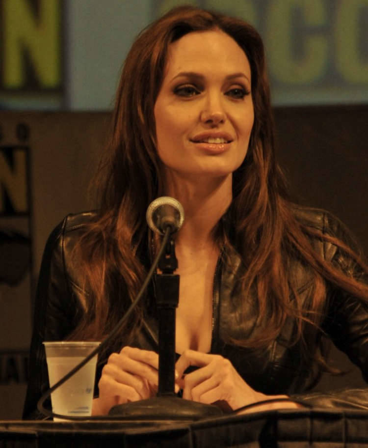 Angelina Jolie SDCC 2010 | 71660 | Photos | The Blemish Angelina Jolie News