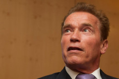 1010-arnold