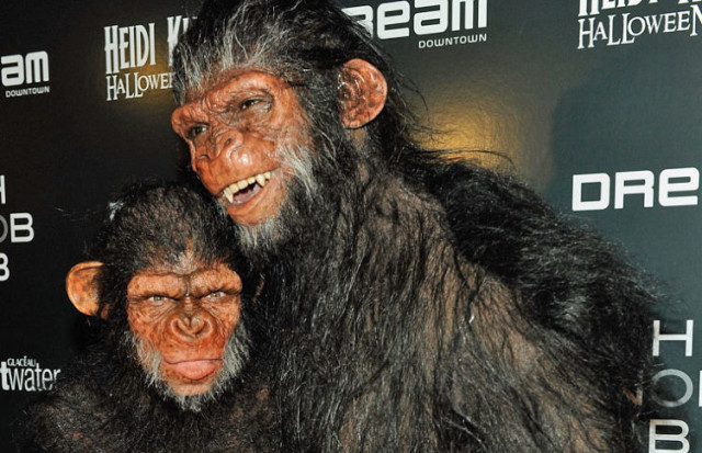 1101-heidi-klum-ape