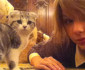1107-taylor-swift-kitty