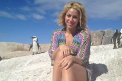 0214-shakira-penguins