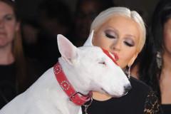 christina-aguilera-target-dog-0918