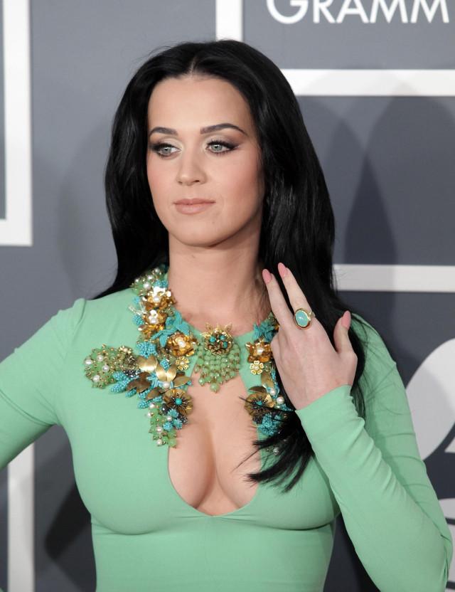 Grammy Awards 2013 137339 Photos The Blemish