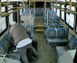 bus-driver-beat