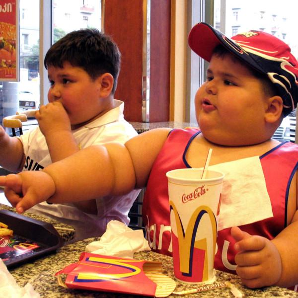 mc donalds and obesity essay