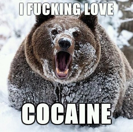cocaine-bear