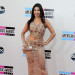 More Celebs at The 2013 American Music Awards in LA