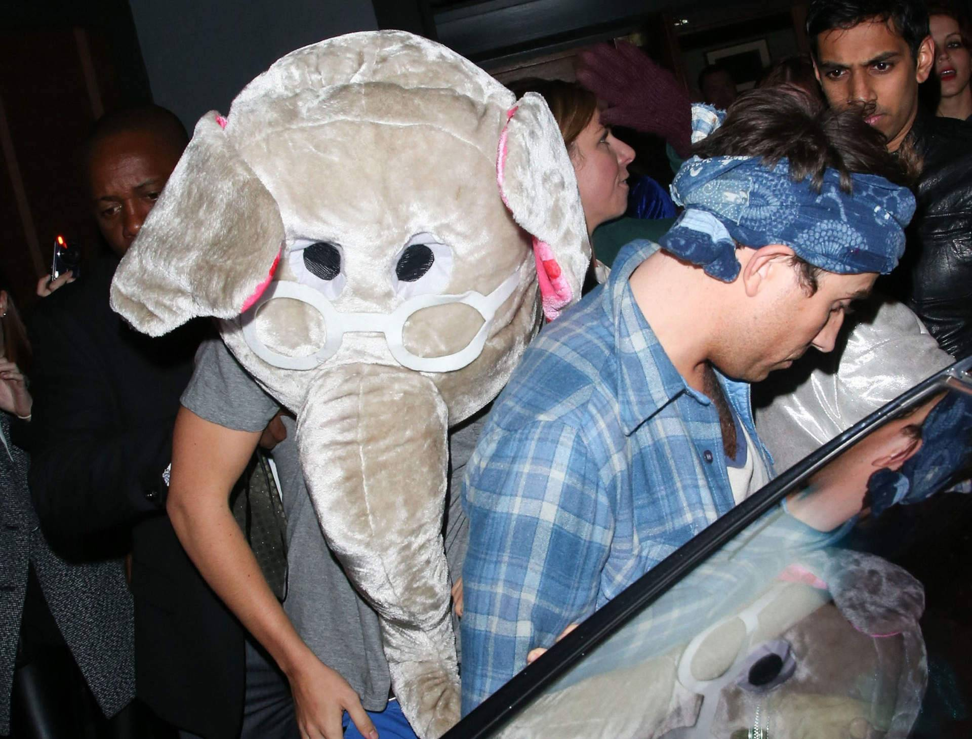 And Now Harry Styles Leaving a Club Wearing an Elephant Head | The ...