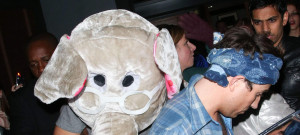harry-styles-elephant-head