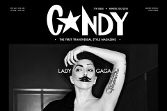 lady-gaga-crush