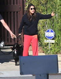 Mila Kunis & Ashton Kutcher Have A Drama Filled Dog Walk!