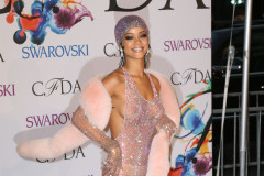 The 2014 CFDA Fashion Awards
