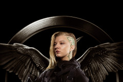 Mockingjay Rebel Warriors