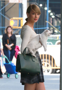 Taylor Swift Steps Out With A Kitten