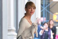 taylor-swift-kitten