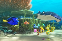 finding-dory-800