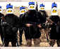 isis_duck1
