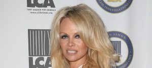 51887833 Last Chance For Animals Benefit Gala held at The Beverly Hilton Hotel in , California on 10/25/15 Last Chance For Animals Benefit Gala held at The Beverly Hilton Hotel in , California on 10/25/15 Pamela Anderson FameFlynet, Inc - Beverly Hills, CA, USA - +1 (818) 307-4813