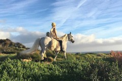 lady-gaga-pony