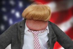Donald Trump Penis Pic