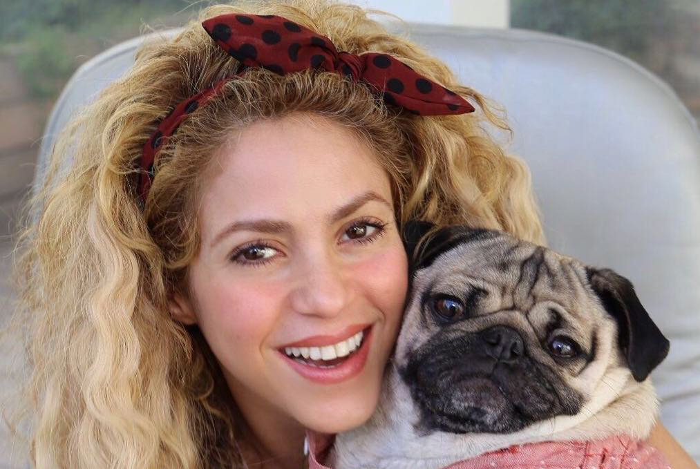Spain targets pop star Shakira in tax inquiry