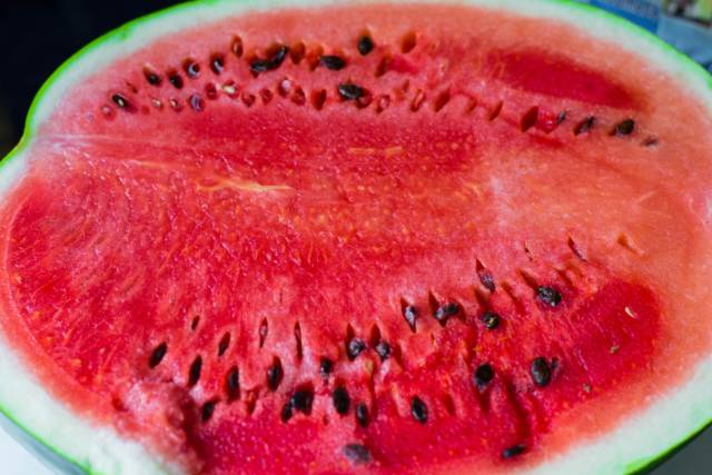 Teacher Has S@x With Watermelon in Front of Student on World's Worst Field Trip